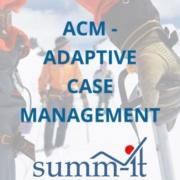 Case Management / Adaptives Case Management - summ-it Unternehmensberatung – B2B-Marketing & Business Development
