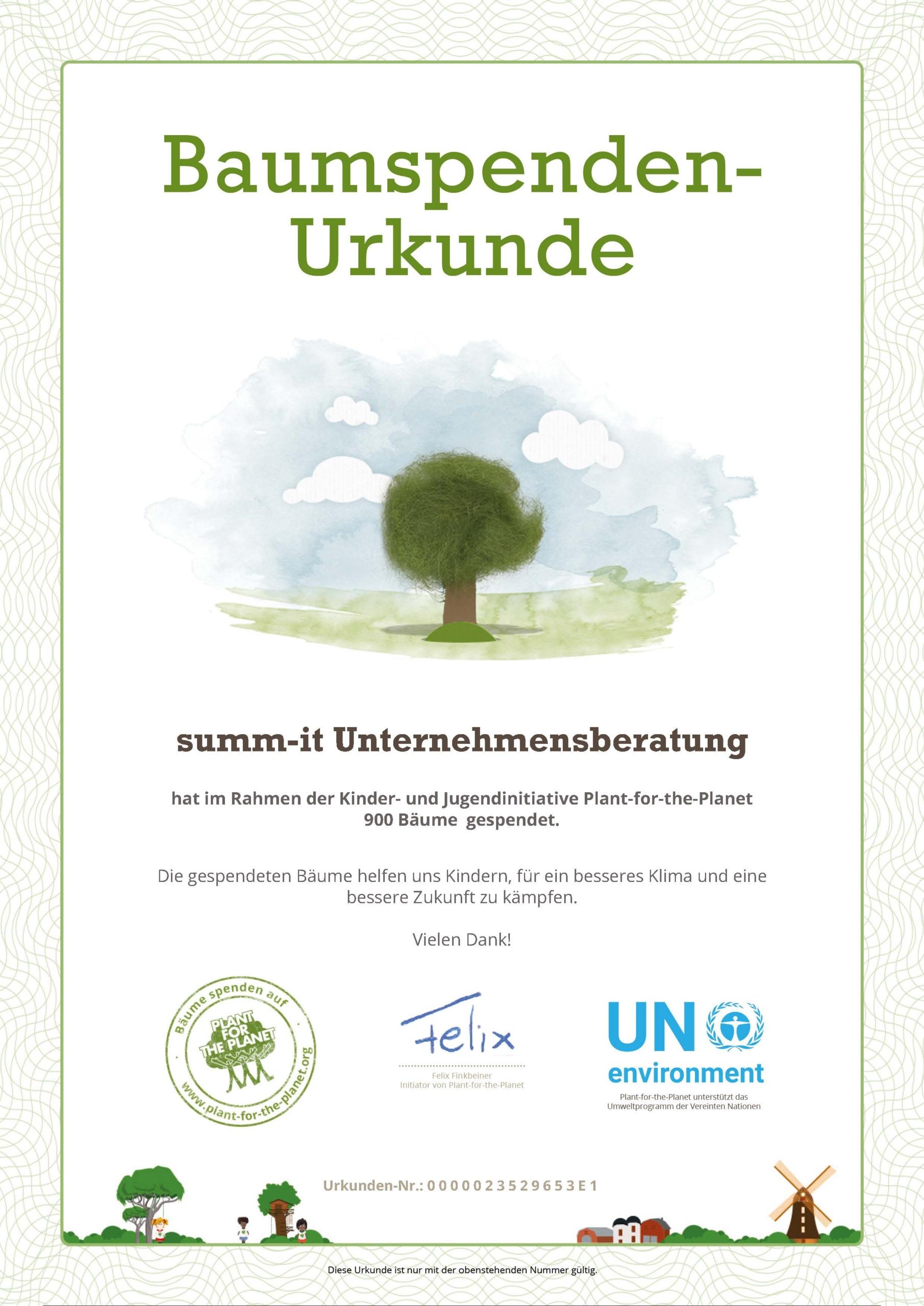 Mit Plant for the Planet Bäume pflanzen, Klimawandel verlangsamen - summ-it Unternehmensberatung