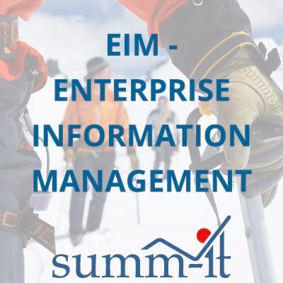 EIM - Enterprise Information Management - summ-it Unternehmensberatung – B2B-Marketing & Business Development