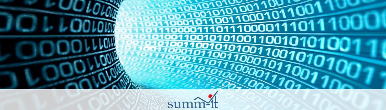 Fehlertolerantes Input Management - summ-it Unternehmensberatung
