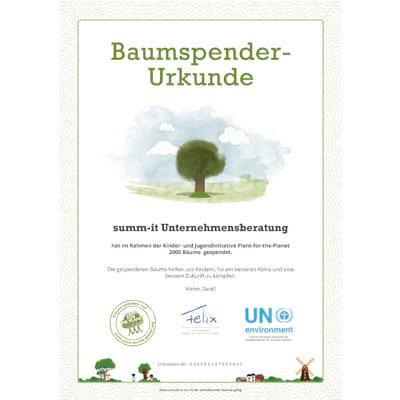 Wir pflanzen Bäume für ein besseres Klima - summ-it ist klimaneutral - summ-it Unternehmensberatung